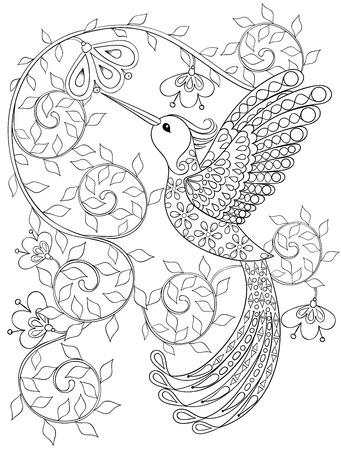 Dibujo para colorear con Hummingbird, zentangle pájaro que vuela por los libros para colorear para adultos o tatuajes con detalles altos aislados sobre fondo blanco. Vectorial blanco y negro dibujo de aves exóticas. Ilustración de vector