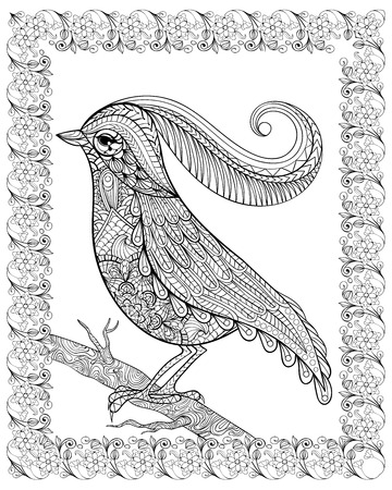 Hand drawn beautiful delicate bird sitting on a branch framed for adult anti stress Coloring Page with high details isolated on white background, illustration in zentangle style. Vector monochrome sketch. Bird collection. Illustration