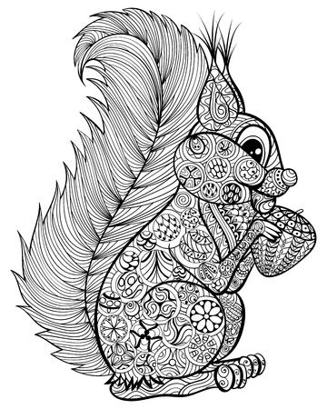 Hand getrokken grappige eekhoorn met moer voor volwassen anti-stress kleurplaat met hoge details op een witte achtergrond, illustratie in zentanglestijl. Vector zwart-wit schets. Nature collectie.