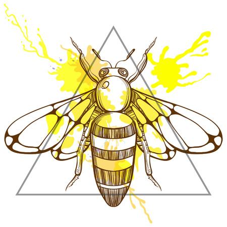 Zentangle estilizado abeja en marco de triángulo con gotas de tinta acuarela. Ilustración del vector del Doodle dibujado a mano. Boceto para el tatuaje o makhenda. Colección del insecto.