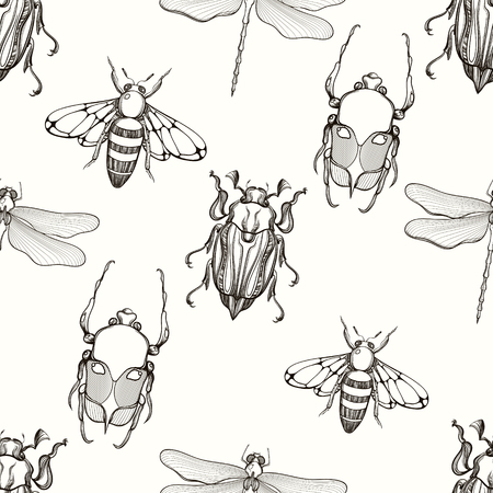 scarab: Hand drawn engraving Sketch of Scarab Beetle, May bug, Bee and Dragonfly seamless pattern.