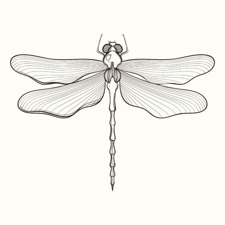 manos logo: Grabado a mano esbozo de la libélula. ilustración vectorial para tatuaje y decorativo broche hecho a mano.