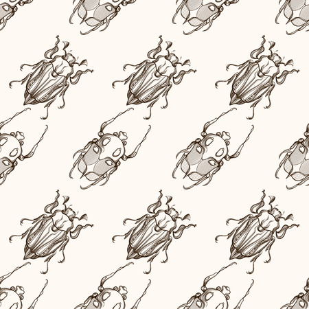 cicada bug: Hand drawn engraving Sketch of Scarab Beetle, May bug or European diving beetle. Vector nature seamless pattern. Illustration