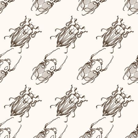scarab: Hand drawn engraving Sketch of Scarab Beetle, May bug or European diving beetle. Vector nature seamless pattern. Illustration