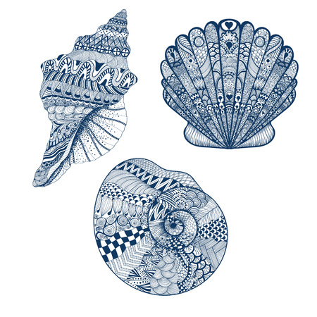 Zentangle stylized set blue seashells. Hand Drawn vector illustration isolated on white backgrounds. Sketch for tattoo or makhenda. Seashell collection. Ocean life.