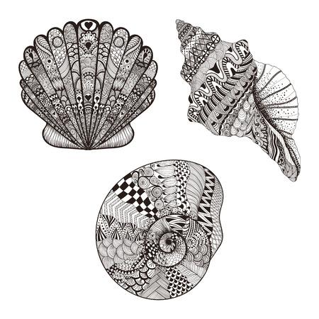 Zentangle 설정 조개를 양식에 일치시키는. 흰 배경에 고립 손으로 그린 벡터 일러스트 레이 션입니다. 문신 또는 makhenda에 대한 스케치합니다. 조개 컬렉션입니다. 해양 생물.