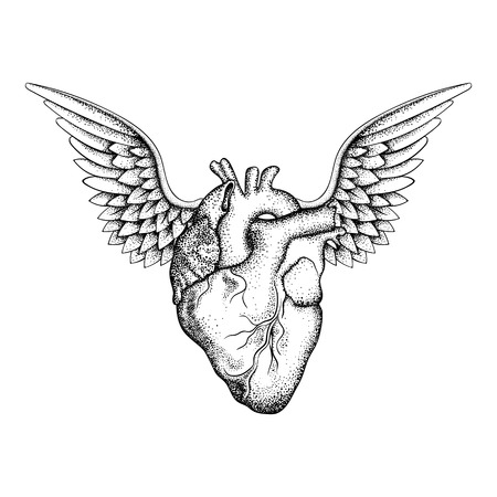 black wings: Hand drawn elegant heart with wings, black sketch for t-shirt print or  tattoos design, dot work art. Vintage vector illustration isolated on white background.