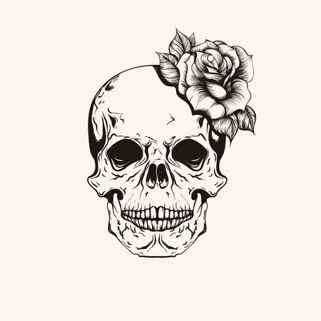 calavera: Dibujado a mano scull boceto con la línea arte del tatuaje rosa. ilustración del vector de la vendimia aislado en el fondo. Vectores