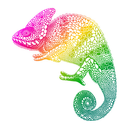 Zentangle stylized multi coloured Chameleon. Hand Drawn Reptile vector illustration in doodle style. Sketch for tattoo or print. Animal collection.
