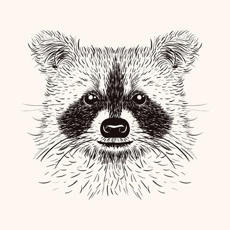 Sketch liner raccoon. Hand drawn vector  illustration in doodle style. Engraving design for tattoos or print. Vettoriali