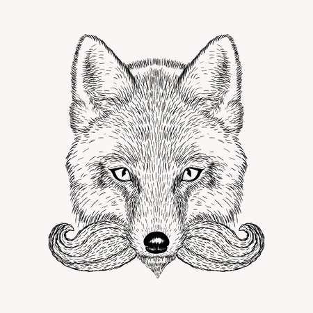 bigote: Fox boceto con barba y bigote. ilustración vectorial de dibujado a mano de estilo Doodle. esbozo de grabado para los tatuajes.