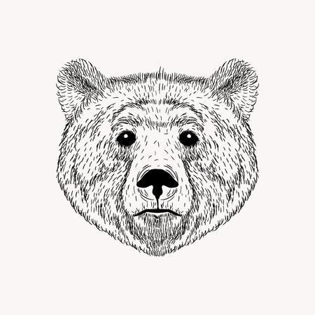 Schetsen realistische gezicht Bear. Hand getrokken vector illustratie in Doodle stijl. Graveren schets voor tatoeages.