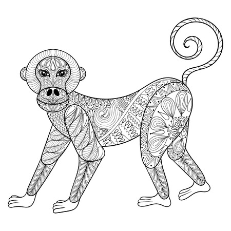 Vector monkey zentangle monkey illustration, marmoset print Macaw Coloring Pages Monkey Coloring Pages Sun Bee Coloring Pages
