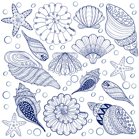 Vector set Shells, zentangle blue seashells for adult anti stress Coloring pages, patterned sea shell illustration for tattoos with high details. hand drawn sketch, Artistically decorative henna print