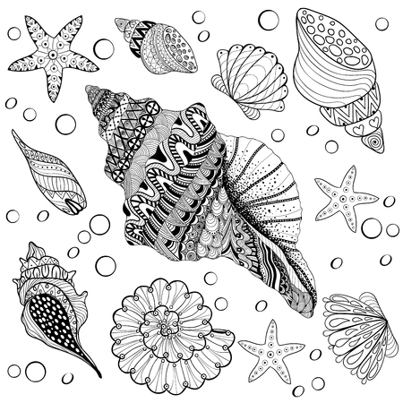 artistically: Vector set Shells, zentangle seeshell for adult anti stress Coloring pages, patterned sea shell, cockleshell illustration for tattoos with high details. hand drawn sketch, Artistically decorative henna print for t-shirt