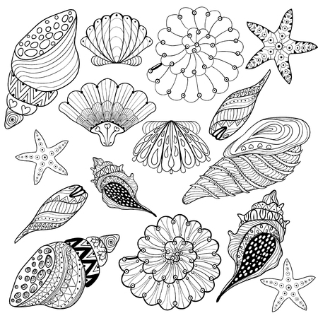 Vector set Shells, zentangle seashells for adult anti stress Coloring pages, patterned sea shell illustration for tattoos with high details. hand drawn sketch, Artistically decorative henna print for t-shirt, bag, fabric