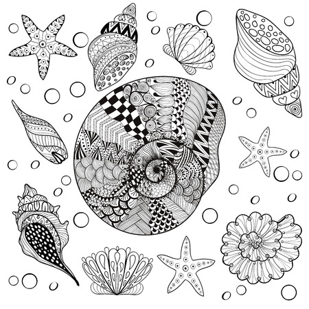 Vector set Sea Shells, zentangle shelsl for adult anti stress Coloring pages, patterned sea shell, cockleshell illustration for tattoos with high details. hand drawn sketch, Artistically decorative henna print for t-shirt
