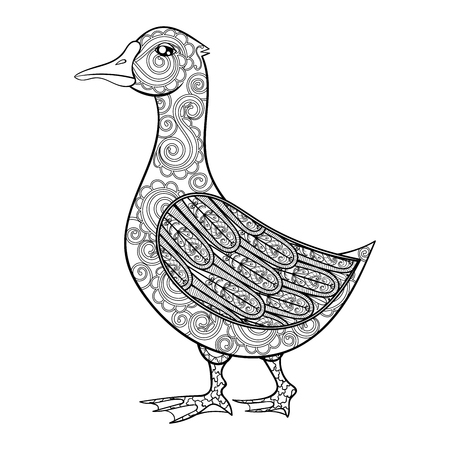 anti stress: Vector zentangle magic goose, black print for adult anti stress coloring page. Hand drawn artistically ethnic ornamental patterned illustration. Domestic bird collection.