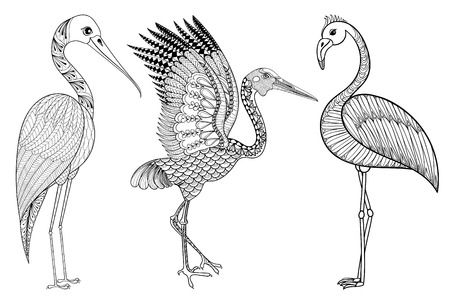blue heron: Zentangle Hand drawn Stork, Flamingo, Brolga for adult antistress coloring pages, post card, t-shirt print, fabric. Bird set illustration in doodle style, tattoo monochrome design. Animal sketch.