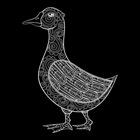 anecdote: Vector zentangle magic goose, print for adult anti stress coloring page. Hand drawn artistically ethnic ornamental patterned illustration. Domestic bird collection. Illustration