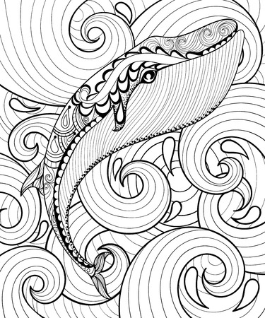 Vector zentangle whale in sea, print for adult coloring page A4 sizw. Hand drawn artistically ethnic ornamental patterned illustration. Sea Animal collection. Isolated Sketch for tattoo, posters, t-shirt design.