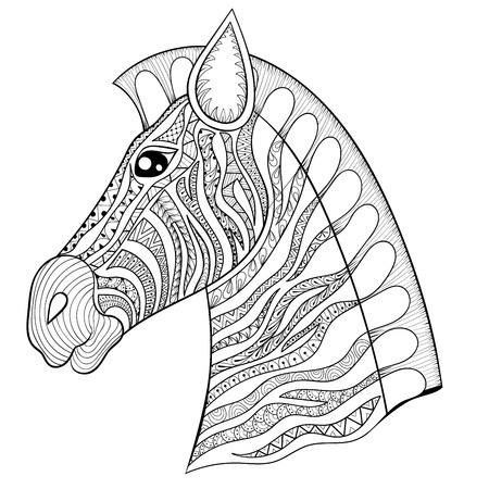 zebra head: Vector zentangle Zebra Head illustration, Horse print for adult anti stress coloring page. Hand drawn artistically ornamental patterned decorative animal for tattoo, boho design