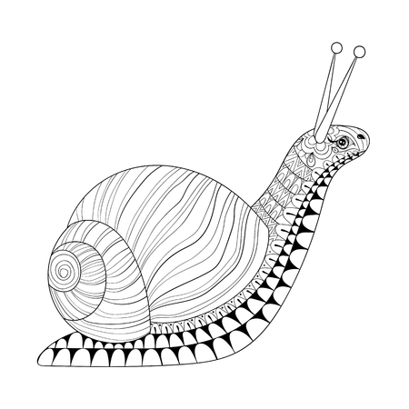 Hand drawn  Snail for adult anti stress colouring pages, post card, mehendi t-shirt print. Isolated animal illustration in doodle, boho style, henna tattoo design. Ilustração