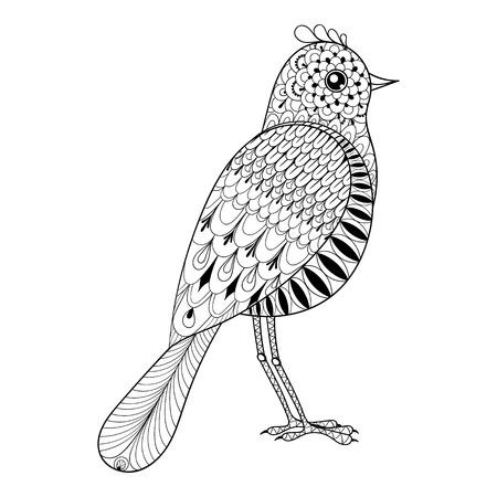 dibujos para colorear: Dibujado a mano del pájaro artístico para colorear adultos antiestrés, arte postal de la terapia, modelado camiseta de la impresión, el estilo tribal Boho. Ilustración aislada en el garabato, diseño de tatuaje de henna.