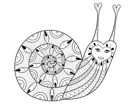 mollusk: Vector Snail  for adult coloring pages, art therapy, ethnic patterned t-shirt print, tattoo design. Boho chic style. Doodle Illustration. Tribal animal. Monochrome sketch mollusk. Illustration