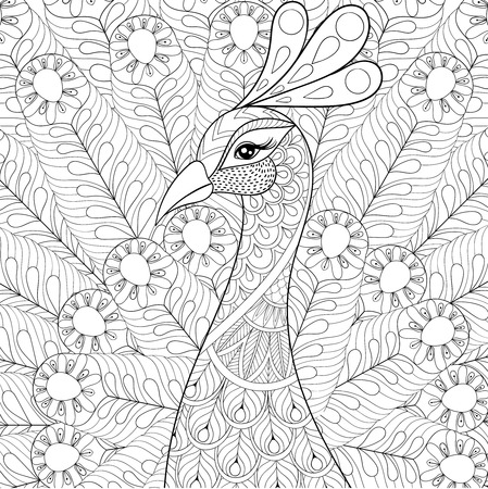 Peacock with feathers in style. Freehand sketch for adult antistress coloring page with doodle elements. Ornamental artistic vector illustration for tattoo, t-shirt print. Bird collection.