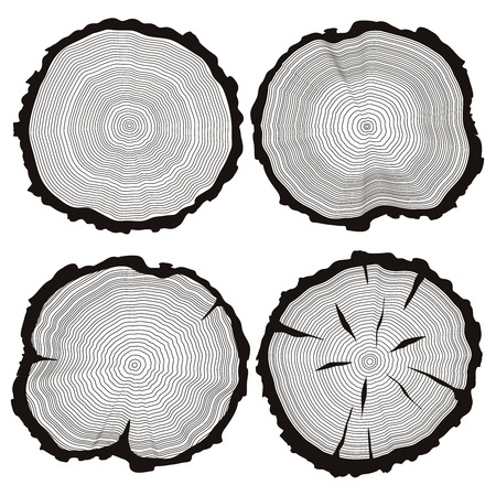 rings on a tree: tree rings set, concept of saw cut pine, fir-tree trunk,  slice, sawmill flat icons, wooden texture illustration isolated on white background.