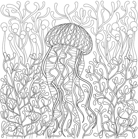 jellyfish, medusa in style. Hand drawn Sea animal in water among seaweed for adult antistress coloring page book, art therapy. illustration. Monochrome sketch, t-shirt print.