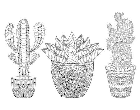 plantas del desierto: Enredar Cactus conjunto, ilustración. delinear las plantas del desierto de maceta, plantas suculentas en el estilo de dibujo para colorear adultos antiestrés, libros, arte terapia. Boceto de tatuaje, camiseta de impresión.