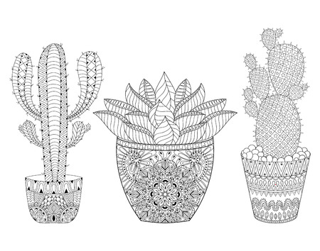 Entangle Cactus set, illustration.  outline desert plants pot, succulents in doodle style for adult antistress coloring pages, books, art therapy. Sketch for  tattoo, t-shirt print. Illustration