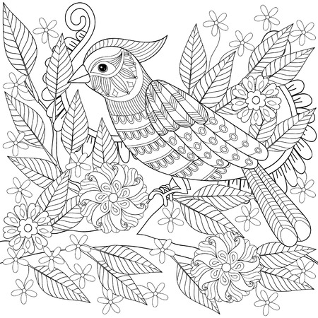 Colorear Anti Estrés Adulto, Dibujado A Mano Zentangle Pájaro ...