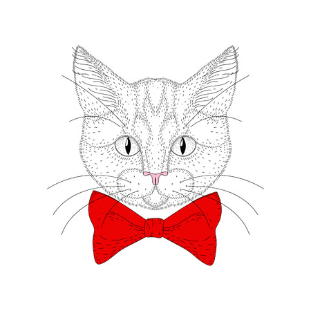 kitty cat: Vector cute cat portrait. Hand drawn hipster kitty head with red bow tie, cheerful fashion animal cartoon illustration for t-shirt print, kids greeting card, invitation for pet party.