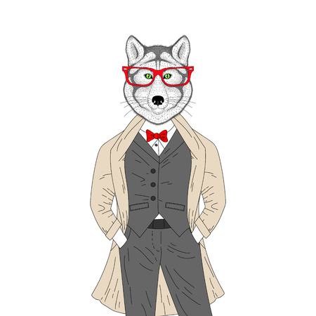 anthropomorphic: Vector brutal wolf in elegant classic suit with coat. Hand drawn anthropomorphic animal with glasses, illustration for t-shirt print, kids greeting card, invitation template, tattoo design. Illustration