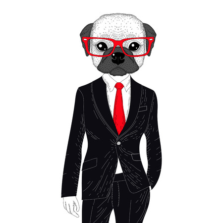 anthropomorphic: Vector brutal french bulldog in elegant classic suit. Hand drawn anthropomorphic dog with glasses, illustration for t-shirt print, kids greeting card, invitation for pet party.
