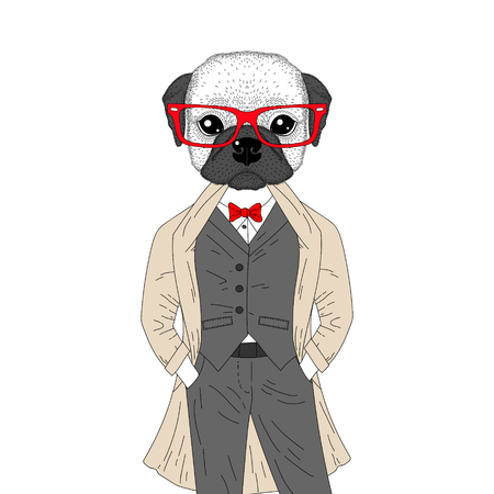 brutal: Vector brutal french bulldog in elegant classic suit with coat. Hand drawn anthropomorphic dog with glasses, illustration for t-shirt print, kids greeting card, invitation for pet party. Illustration
