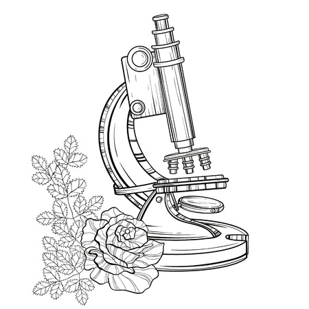 old microscope with roses. Vintage hand drawn illustration for science book cover, tattoo template, laboratory alchemy symbol isolated on white background. Back to School sketch.