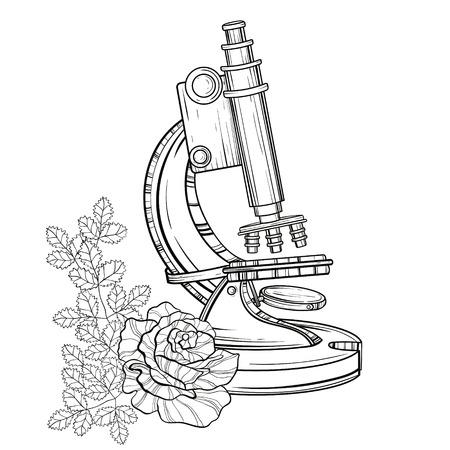 vecchio microscopio con rose. Illustrazione disegnata a mano d'epoca per la copertina del libro di scienza, modello del tatuaggio, simbolo del laboratorio di alchimia isolato su sfondo bianco. Ritorna allo schizzo della scuola.