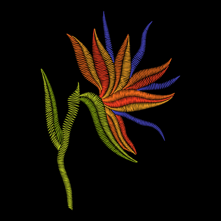 ginger flower plant: Embroidery Bird of Paradise flowers, tropical Strelitzia. Vector fashion ornamental floral print on black background for fabric traditional folk decoration.
