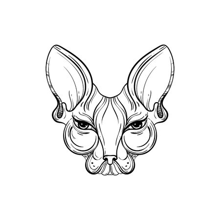 Sphynx cat face vector illustration. Tattoo template in monochrome graphic style. Vintage mascot design.