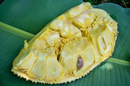 Sweet yellow jackfruit Stock Photo