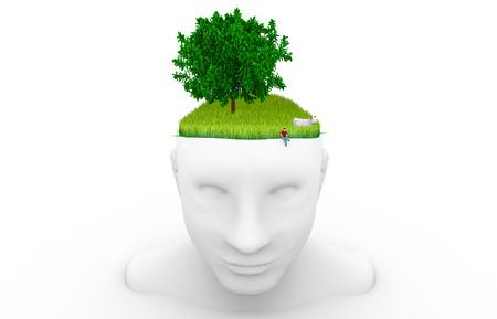 ecology, environmental protection, nature