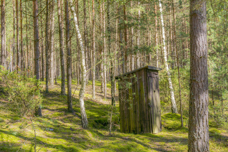 latrine: toilet in the forest Stock Photo