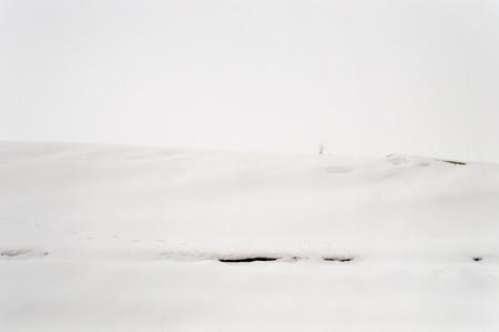 endless: Endless Snowy Landscape of an Empty Field