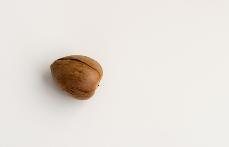 alimentation: Single avocado seed isolated on a white background
