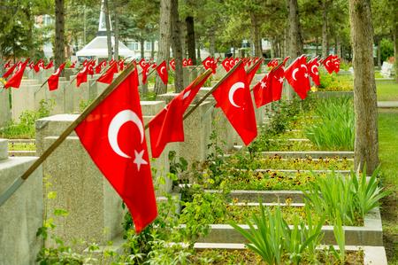Visnelik Air Force Martyrs Cemetery with Turkish flags in Eskisehir