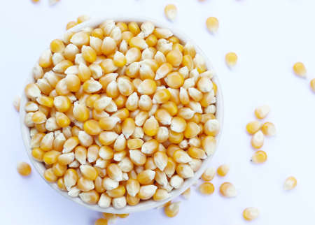 seed corn yellow